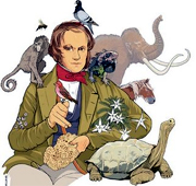 Darwin, ilustração de Jonathan Williams (Nature)